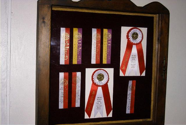 Win Ribbons