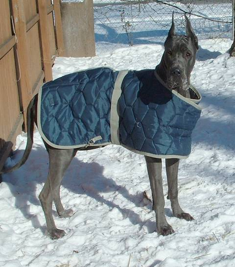 thunder_winter_coat_007c.jpg